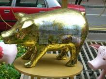 cochon d'or2